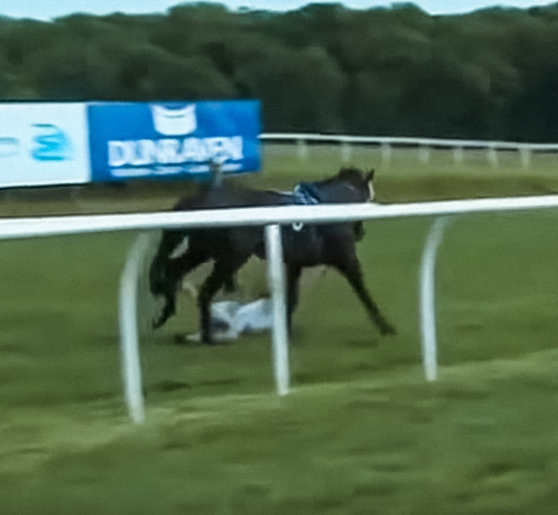 Race reporter hit by horse Hayley Moore